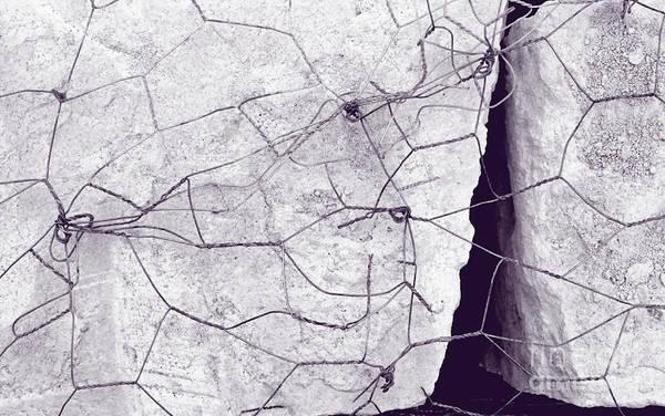 Wire Wrap Photograph - Embrace by Joe Pratt