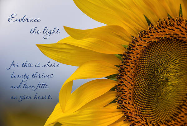 Wall Art - Photograph - Embrace The Light by Dale Kincaid