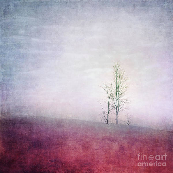 Carmine Wall Art - Photograph - Embracing Solitude by Priska Wettstein