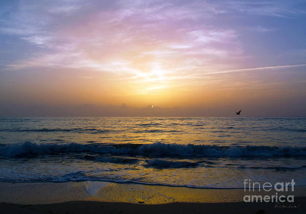 Photograph - Treasure Coast Florida Tropical Sunrise Seascape B3 by Ricardos Creations