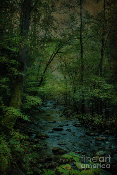 Wall Art - Photograph - Emerald Creek by Lena Auxier