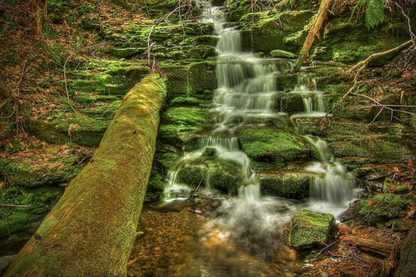 Poconos Wall Art - Photograph - Emerald Dreams by Evelina Kremsdorf
