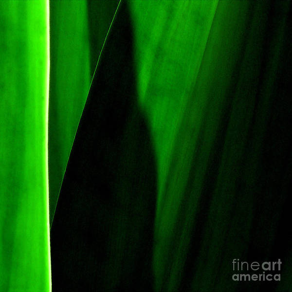Emerald Art Print by James Temple
