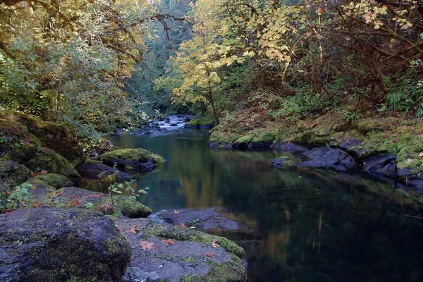 Photograph - Emerald Pools #3 by Ben Upham III