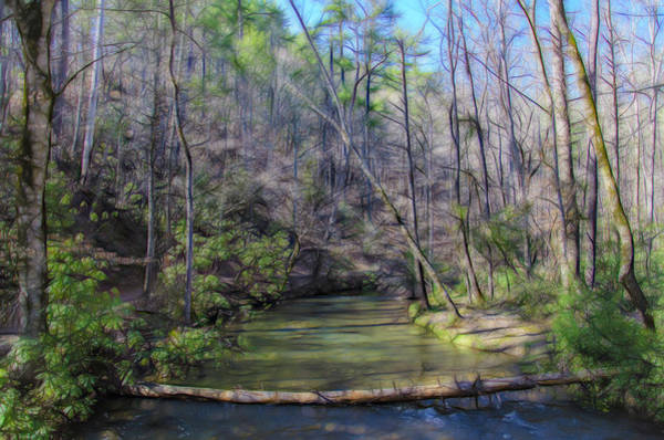 Photograph - Emerald Spring by Jim Cook