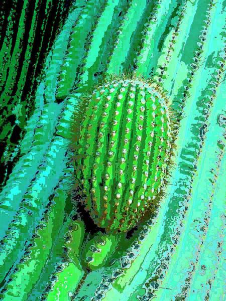 Cactus Mixed Media - Emergence by Dominic Piperata
