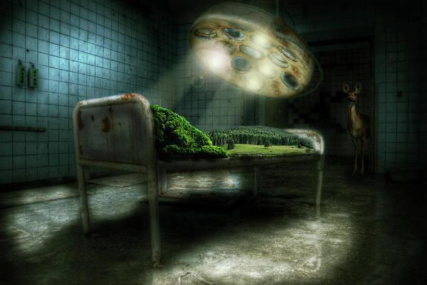 Wall Art - Digital Art - Emergency Nature  by Nathan Wright