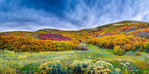 Photograph - Emigration Canyon by Michael Ash