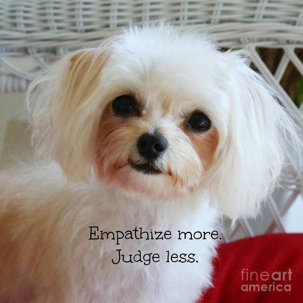 Photograph - Empathize More Judge Less by Carol Groenen
