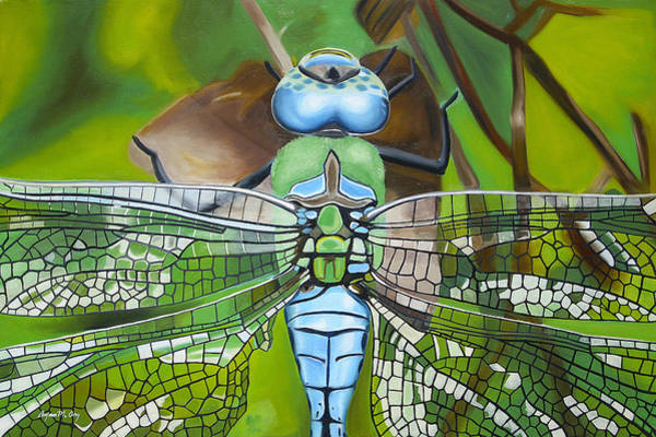 Bryan Painting - Emperor Dragonfly by Bryan Ory