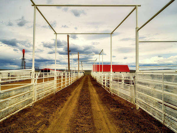 Feedlot Photograph - Empty Corrals by Mountain Dreams