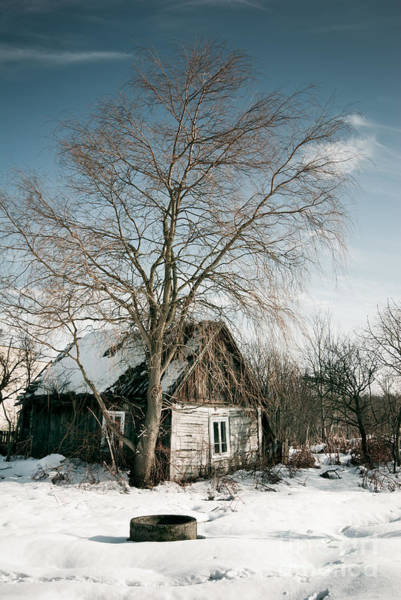 Wall Art - Photograph - Empty Old Wooden House In Winter by Arletta Cwalina