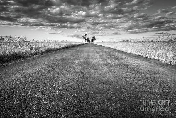 Straight Ahead Wall Art - Photograph - Empty Straight Long Asphalt Road. Black And White by Michal Bednarek