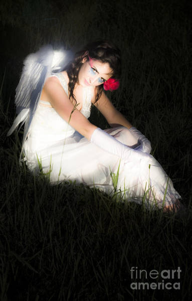 Photograph - Enchanted Angel by Jorgo Photography - Wall Art Gallery