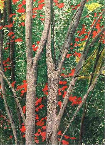 Painting - Enchanted Birches by Lynne Atwood