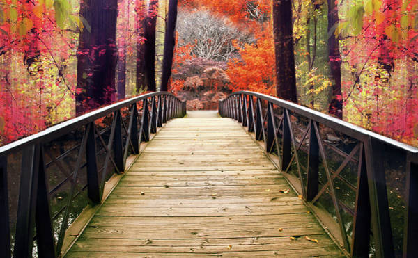 Footbridge Photograph - Enchanted Crossing by Jessica Jenney