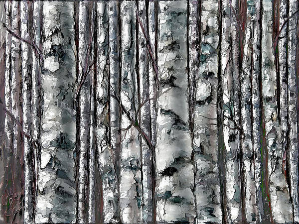 Painting - Enchanted Forest -black And White by OLena Art - Lena Owens
