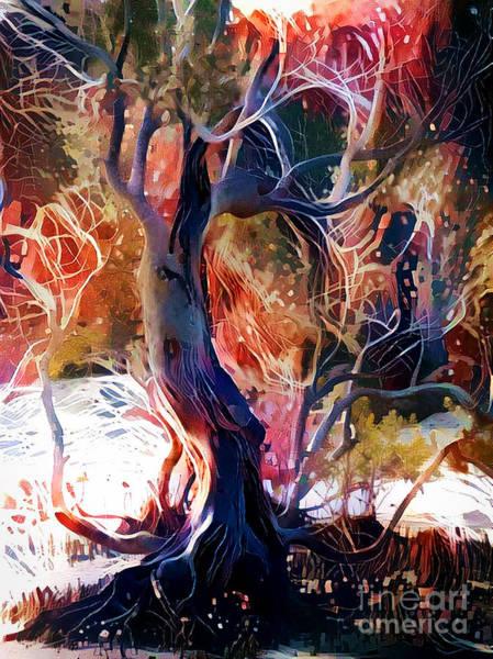 Mangroves Digital Art - Enchanted Mangrove by Trudee Hunter