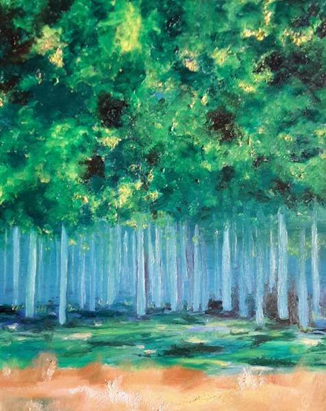 Enchanted Poplars Art Print
