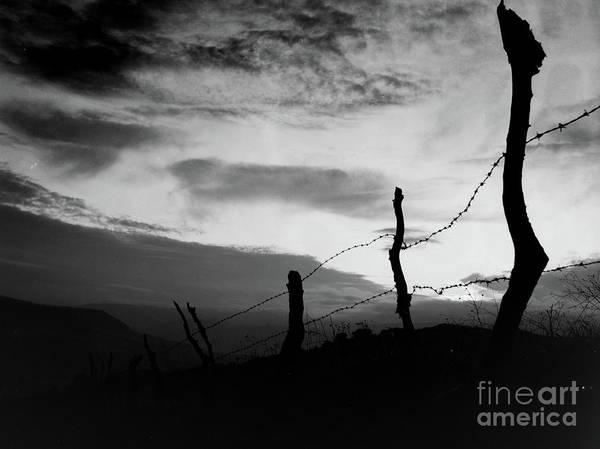 Photograph - Enclosure by Bruno Spagnolo