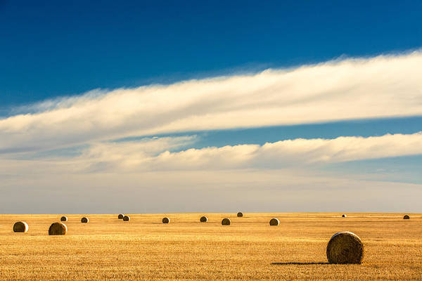 Bales Photograph - End Of Autumn by Todd Klassy