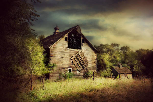 Photograph - End Of Days by Julie Hamilton