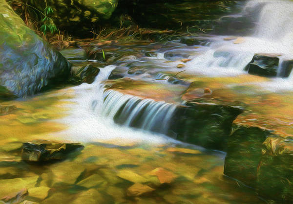 Orange County Digital Art - End Of The Falls by Lisa Bell
