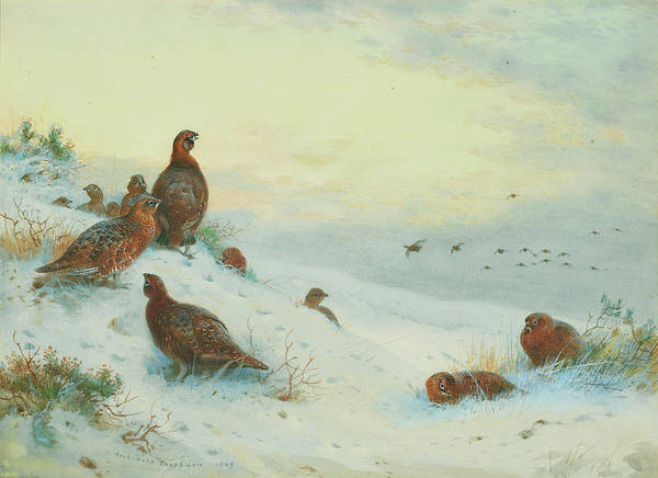 Wall Art - Painting - End Of The Season by Archibald Thorburn