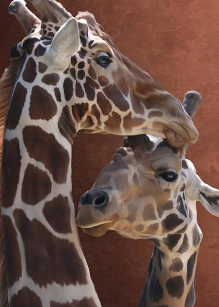 Photograph - Endearing Giraffes by Debi Dalio