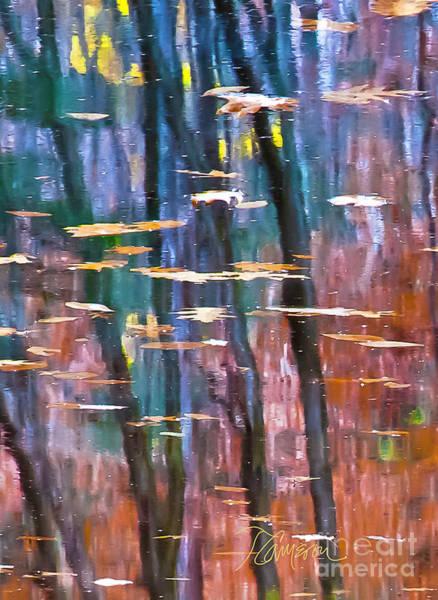 Enders Reflection Art Print