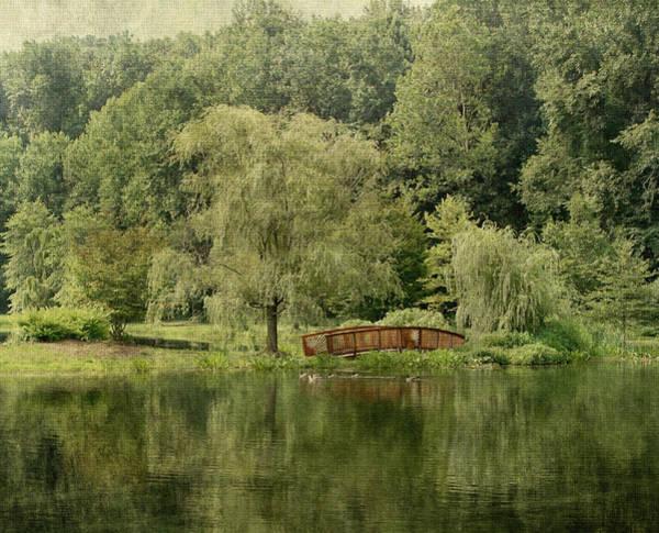 Pleasing Photograph - Endless Beauty by Kim Hojnacki