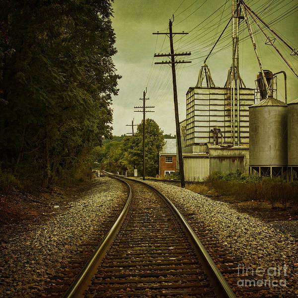 Wall Art - Photograph - Endless Journey by Andrew Paranavitana