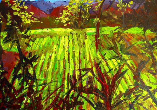 Painting - Endless Vineyards by Patricia Awapara