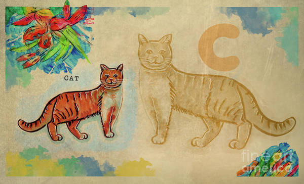 Drawing - English Alphabet , Cat by Ariadna De Raadt