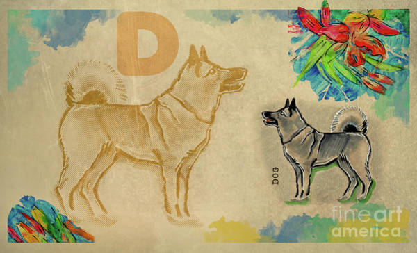 Drawing - English Alphabet , Dog by Ariadna De Raadt