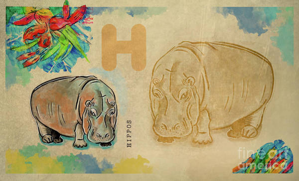 Drawing - English Alphabet ,  Hippos by Ariadna De Raadt