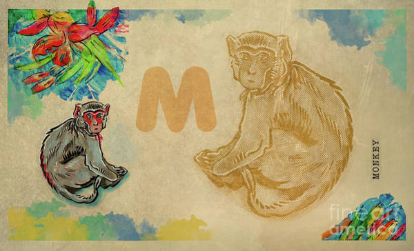 Drawing - English Alphabet , Monkey by Ariadna De Raadt