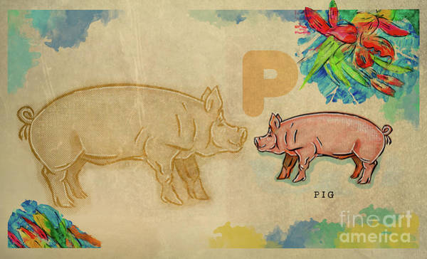 Drawing - English Alphabet , Pig by Ariadna De Raadt