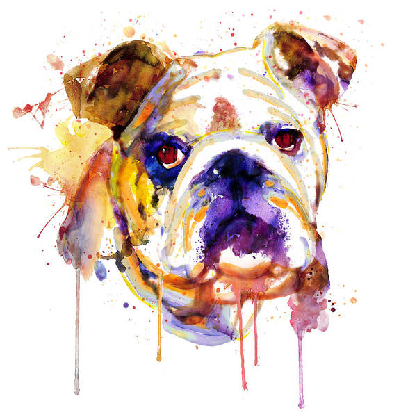 Zoology Painting - English Bulldog Head by Marian Voicu