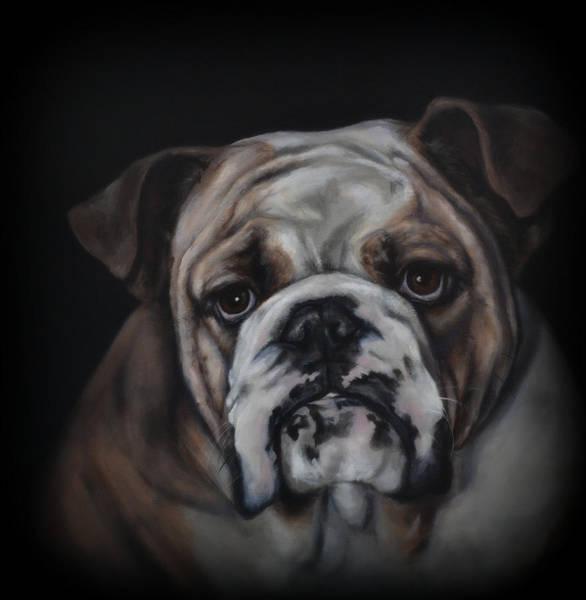 English Bulldog Painting - English Bulldog by Matt Johnson