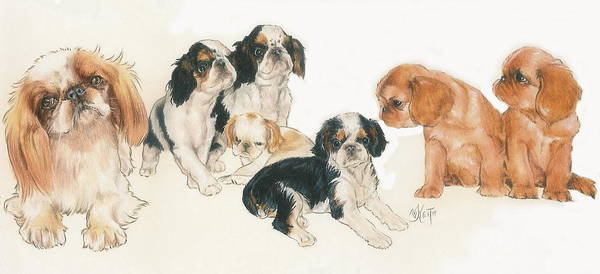 Wall Art - Mixed Media - English Toy Spaniel Puppies by Barbara Keith