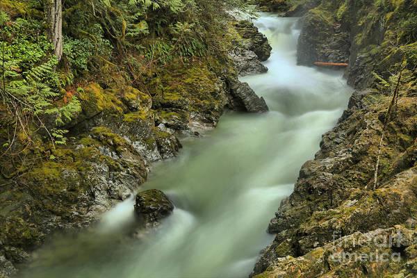Photograph - Englishman River by Adam Jewell