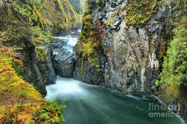 Photograph - Englishman River Falls Bc by Adam Jewell