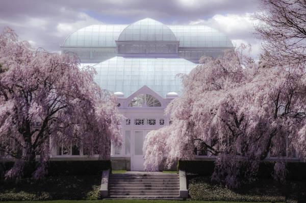 Photograph - Enid Haupt Conservatory New York Botanical Garden by Julie Palencia