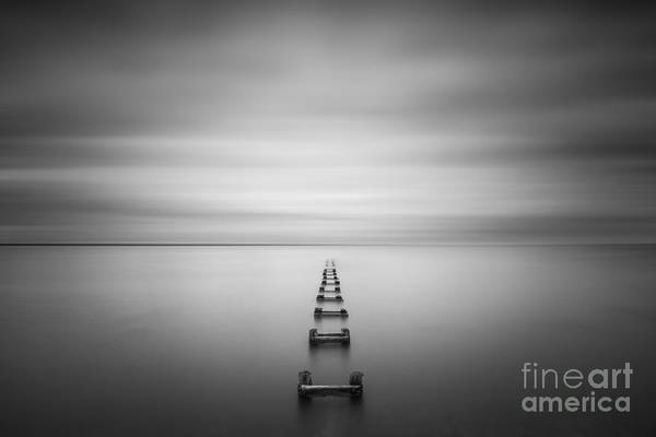 The Grey Photograph - Enjoy The Silence  by Michael Ver Sprill