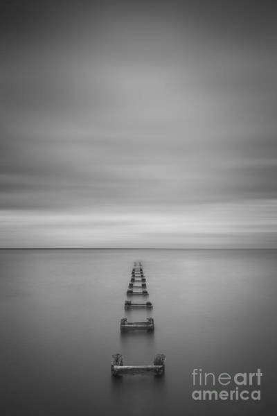 The Grey Photograph - Enjoy The Silence Vertical  by Michael Ver Sprill