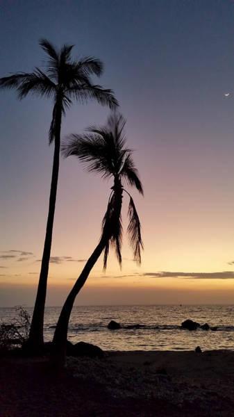Photograph - Enjoy The View by Pamela Walton