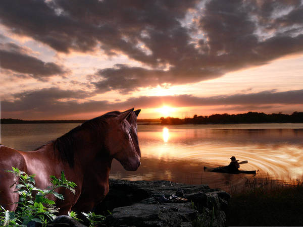Loftus Photograph - Enjoying The Sunset by Michele A Loftus