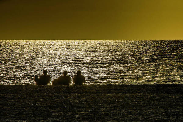 Photograph - Enjoying The Sunset by Wolfgang Stocker