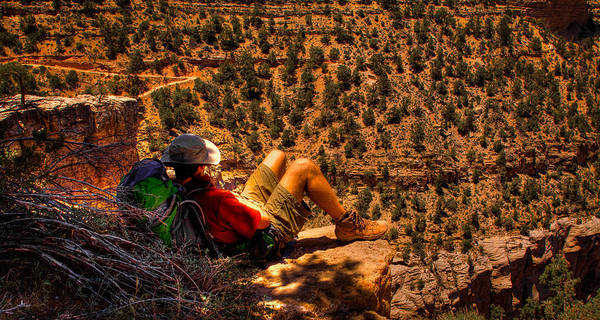 Photograph - Enjoying The View by David Patterson
